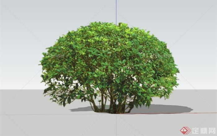 现代黄杨球植物景观素材设计su模型[原创]
