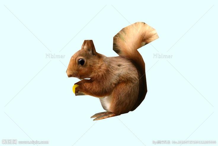 动物模型矢量素材,动物模型 兔子 兔鼠 山兔 獭兔,动物模型图片,昵图